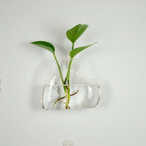 Image of Heat-resistant Glass Vase