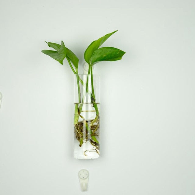 Heat-resistant Glass Vase