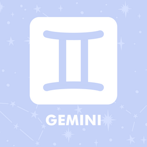 Gemini - Shop Your Sign