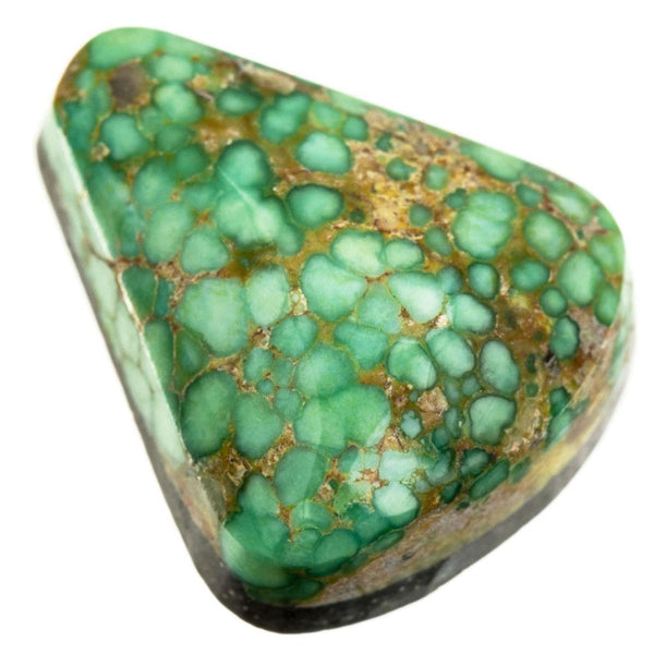 A++ SONORAN GOLD Turquoise Cabochon Cab Natural Spiderweb Not Carico Lake 11.25