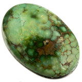 SONORAN GOLD Turquoise Cabochon Cab Natural Spiderweb Not Carico Lake 10.35 Lot