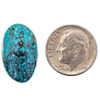 Natural Spiderweb Turquoise Cabochon Cab ITHACA PEAK Not Lander Blue 10.5 ct