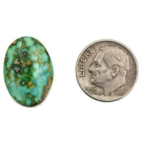 A++ SONORAN GOLD Turquoise Cabochon Cab Natural Spiderweb Not Carico Lake 9.7ct