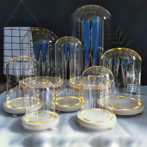 Glass Cloche with LED Base