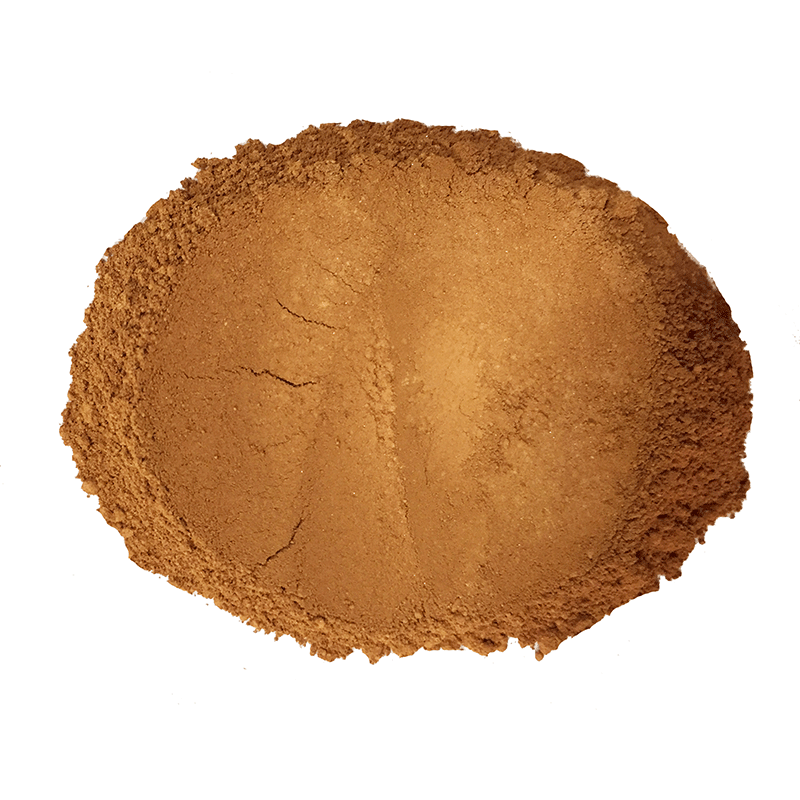 Lily Lolo Mineral Foundation SPF 15 - Hot Chocolate
