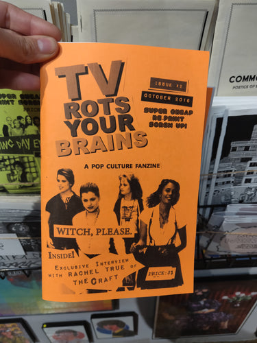 TV Rots Your Brains zine issue #2 interview with Rachel True!