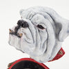 Georgia Bulldogs UGA Go Dawgs University of Georgia #Go Dawgs #Georgia Bulldogs Football #UGA