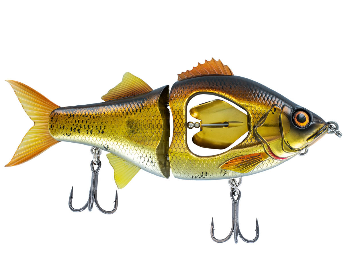 Gold Shiner | 130mm 165mm & 200mm
