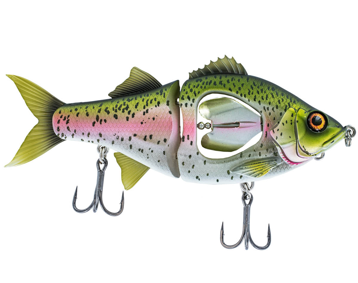 Rainbow Trout | 130mm 165mm & 200mm