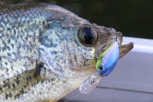 Best New Micro Crankbait?
