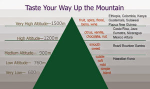 The Effect of Altitude on Coffee Flavor graphic