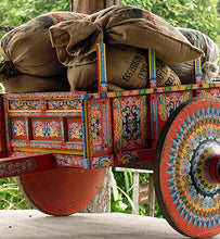 costa rica oxcart filled with harvested coffee