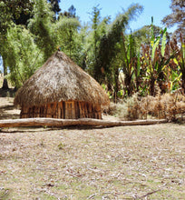 ethiopian hut with thatched roof in clearing
