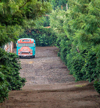 Guatemala Antigua bus on dirt road