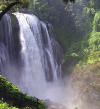 honduras waterfall surrounded by thick vegetation