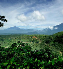 Sumatra landscape with volcanoes in the distance