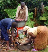 Uganda workers operate a pulping machine