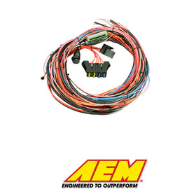 "AEM EMS-4 96"" Wiring Harness with Fuse & Relay Panel  AEM Part# - Xenocron Tuning Solutions"