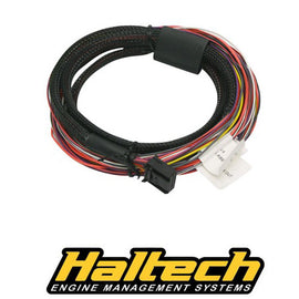 Haltech Platinum PRO/Sport Plug-in Auxiliary I/O Harness Only - Xenocron Tuning Solutions