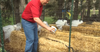 Straw Bale Gardening: How to Grow Your Own Food with Less Work and Maintenance. (VIDEO)