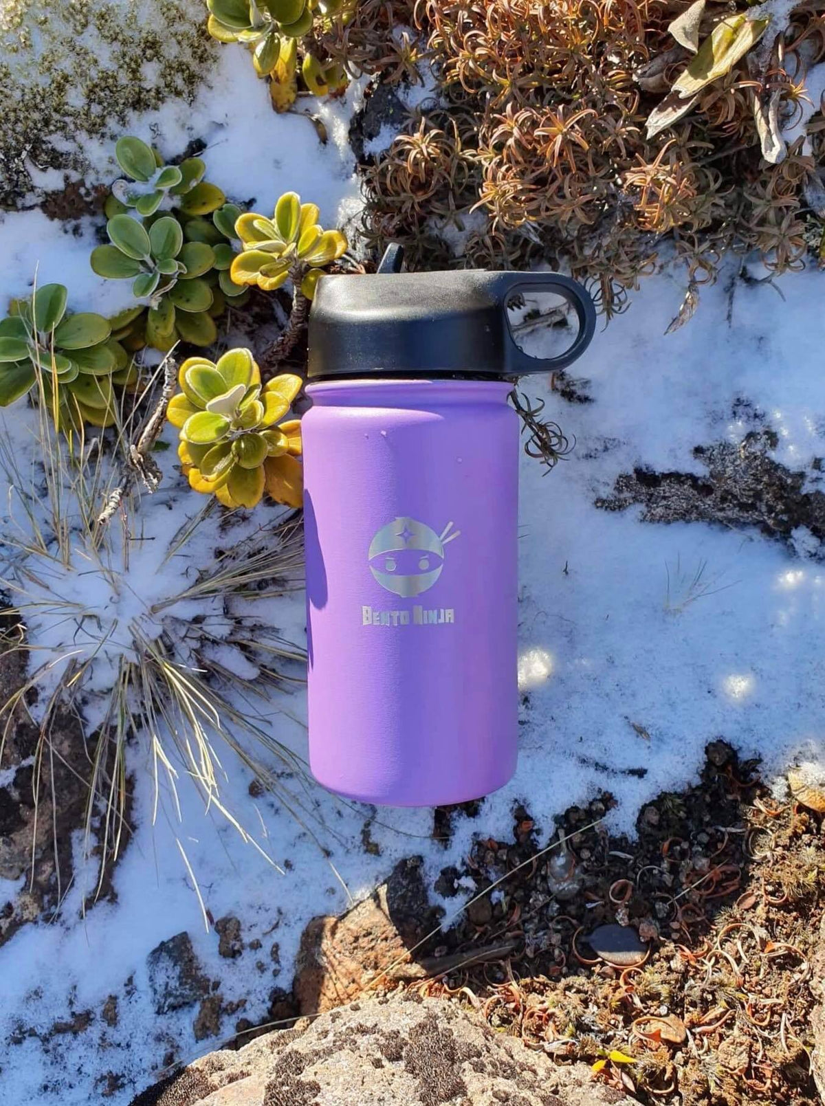 Best double insulated water bottle