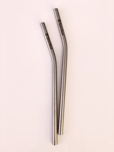 smoothie stainless steel straw nz