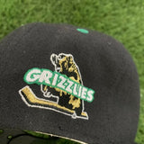 Vintage Denver Utah Grizzlies IHL #1 Apparel Minor Hockey Wool Snapback Hat OSFA