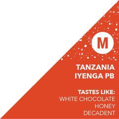 Tanzania Iyenga PB, DRINK COFFEE DO STUFF - Truckee/Tahoe's Specialty Coffee Roastery