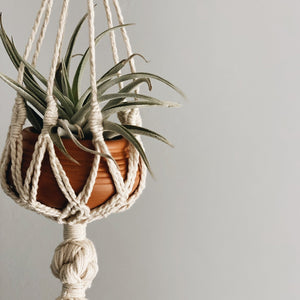 Little Macrame Plant Hanger + Pot