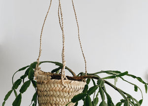 Little Hanging Basket