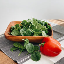 Rectangle Salad Bowl