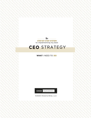 CEO SUCCESS Strategy Guide