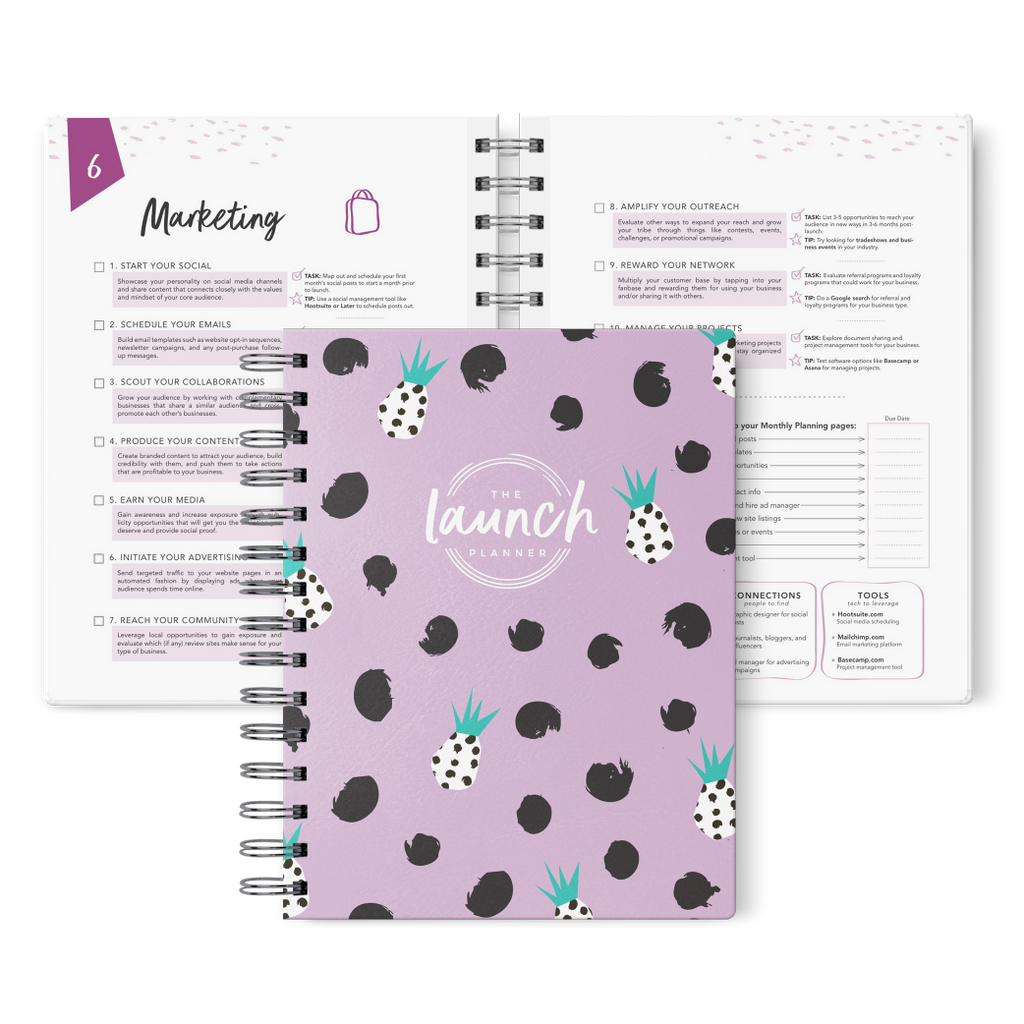 "The Launch Planner™ 2018 (Beta): Purple Pineapple, ""BLEMISHED BEAUTY"""