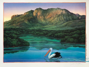2e-'Pelican at Hinchinbrook Island'