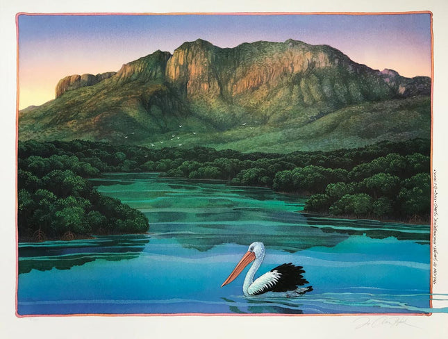 Pelican at Hinchinbrook Is.