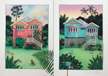 C1, C2-'Pink Queenslander' & 'Blue Queenslander'