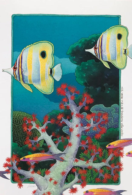 Reef Fish Floating