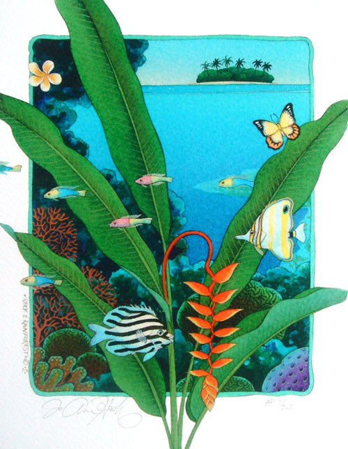 Reef and Rainforest 1