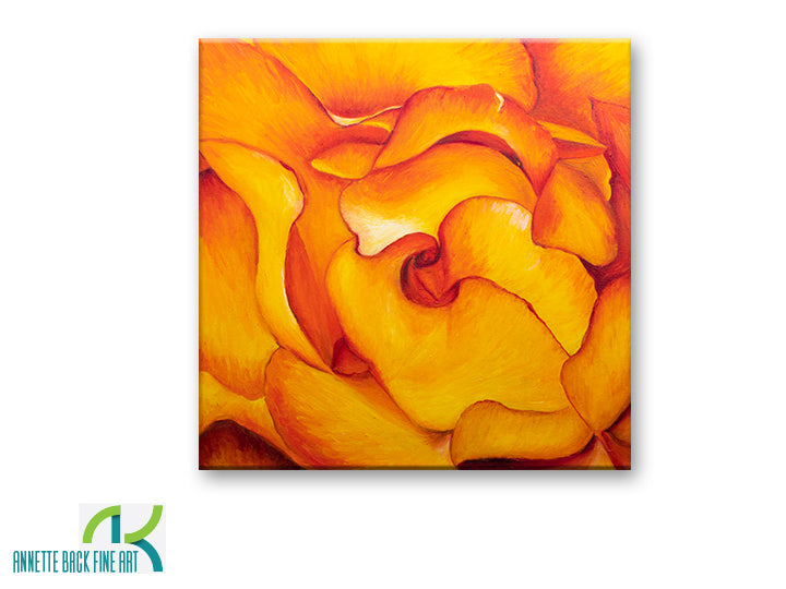 Fire & Rose by Annette Back - 20x20-Original Oil on Canvas-annettebackart