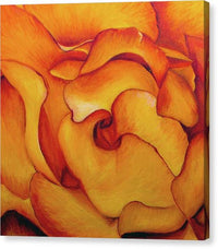 Gallery Wrap - Fire & Rose
