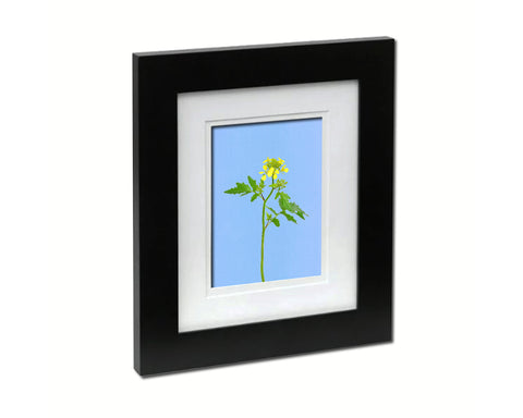 White Mustard Flower Art Wood Frame With Mat Wall Decor Prints Gifts