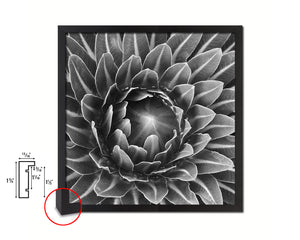 The Cactus Bud of Plant B &W Succulent Leaves Spiral Plant Wood Framed Print Decor Wall Art Gifts
