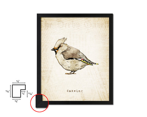 Waxwing Vintage Bird Fine Art Paper Prints Home Decor Wall Art Gifts