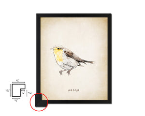 Robin Vintage Bird Fine Art Paper Prints Home Decor Wall Art Gifts