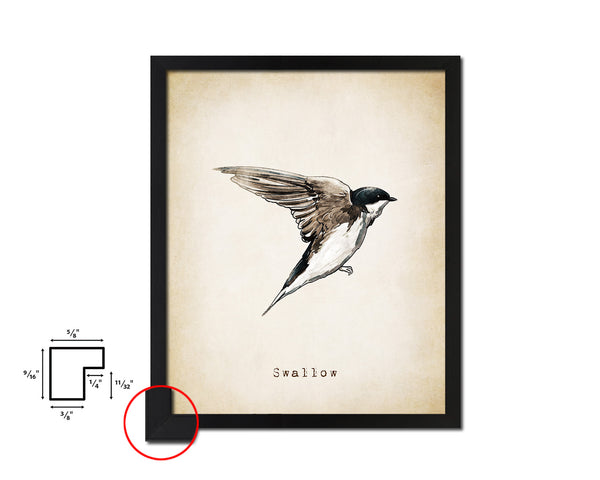 Swallow Vintage Bird Fine Art Paper Prints Home Decor Wall Art Gifts