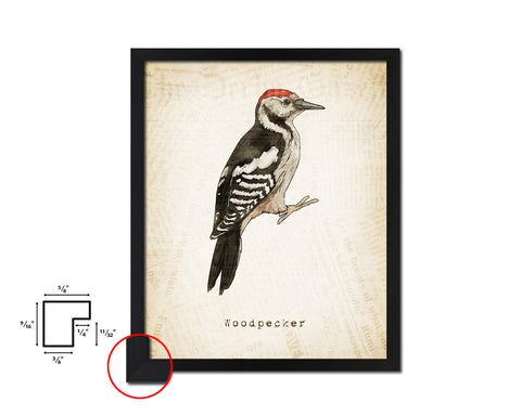 Woodpecker Vintage Bird Fine Art Paper Prints Home Decor Wall Art Gifts