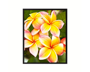 Plumerias Yellow Flower Wood Framed Paper Print Wall Decor Art Gifts