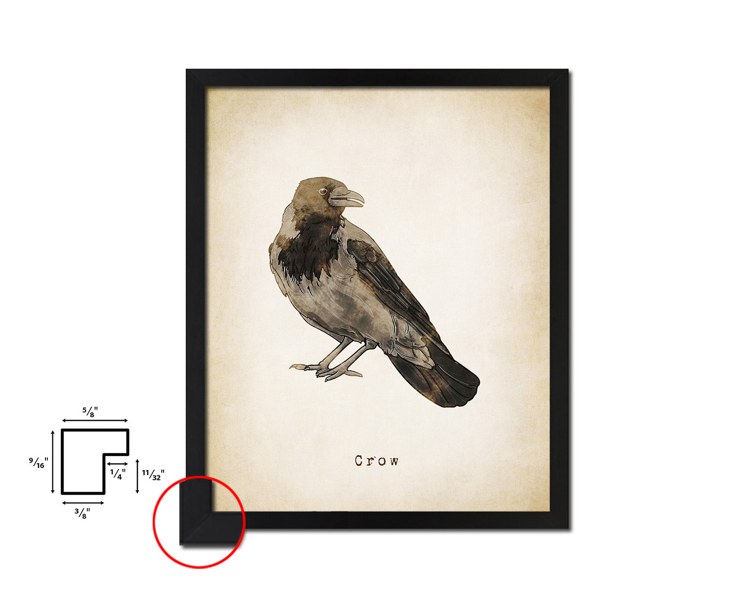 Crow Vintage Bird Fine Art Paper Prints Home Decor Wall Art Gifts