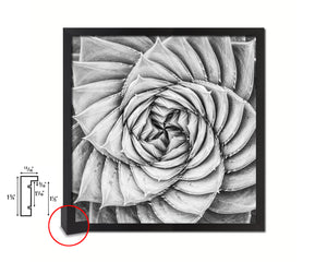 Aloe Succulent B &W Leaves Spiral Plant Wood Framed Print Decor Wall Art Gifts