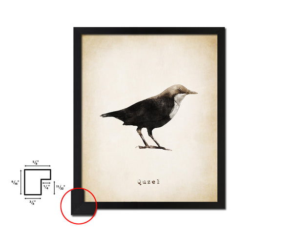Quzel Vintage Bird Fine Art Paper Prints Home Decor Wall Art Gifts